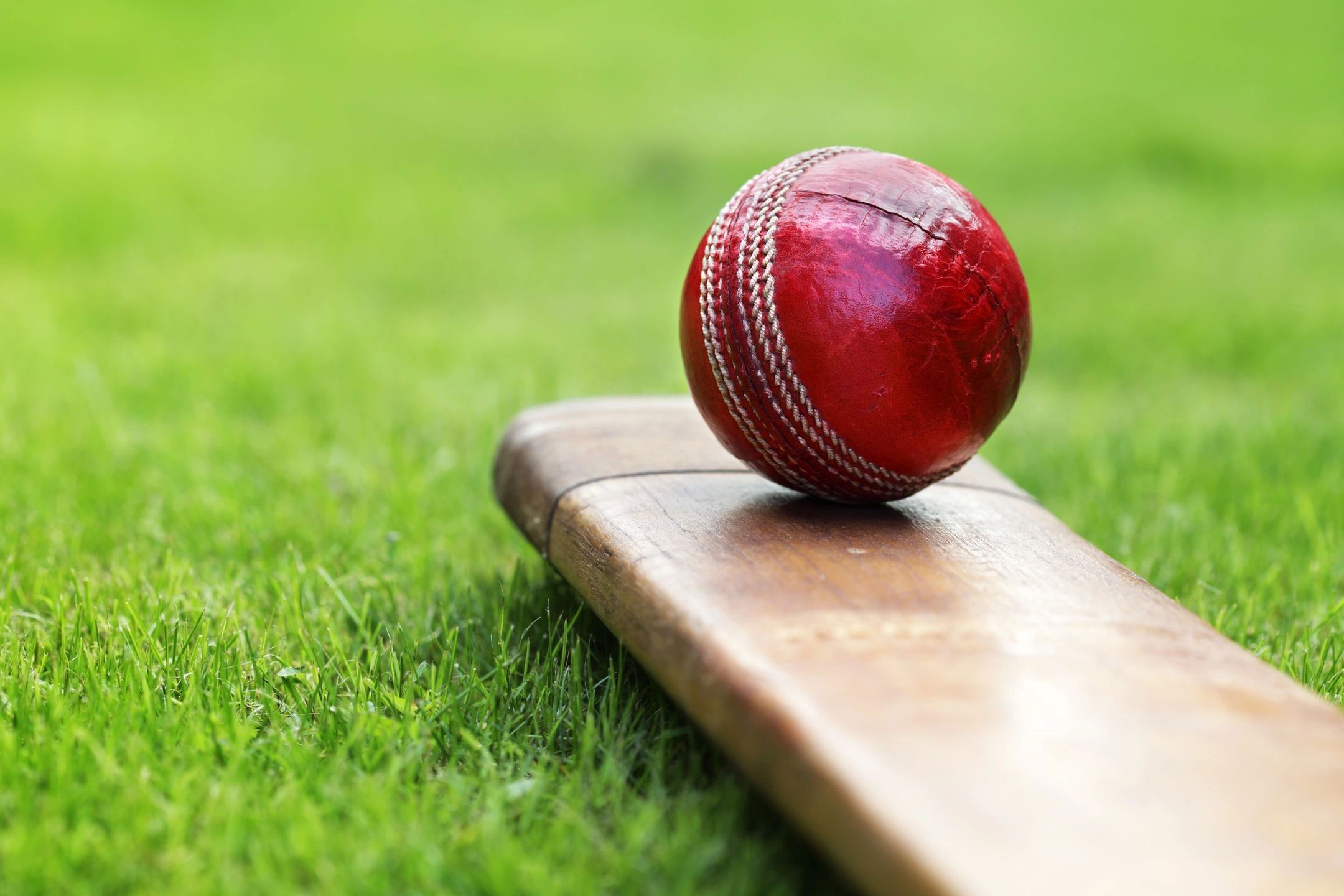 Cricket match - state excise department